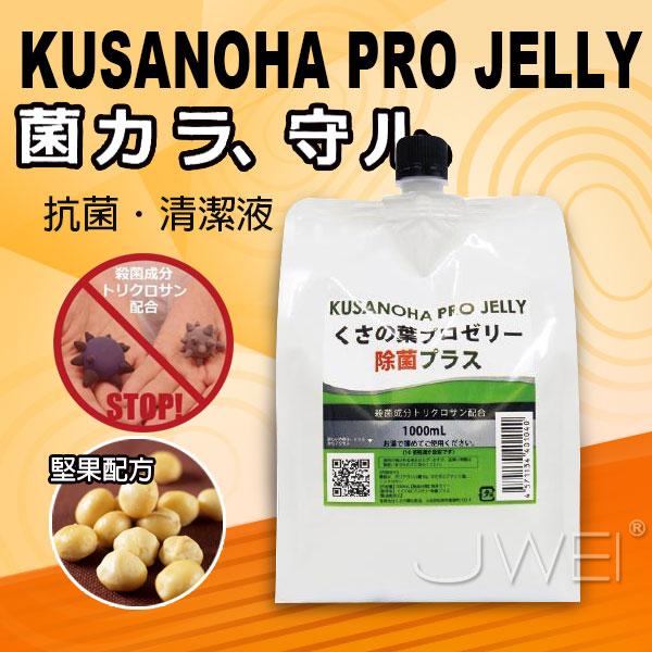 日本NPG*抗菌潤滑液大容量-1000ml
